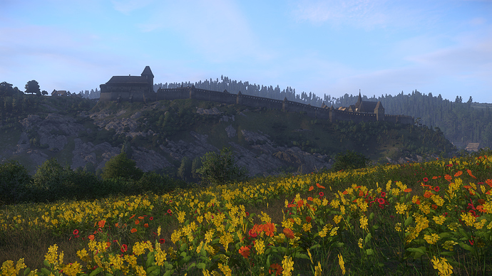 Kingdom Come  Deliverance Screenshot 2018.05.26 - 18.13.19.16